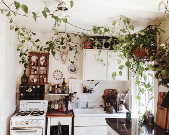 boho-kitchen-with-plants