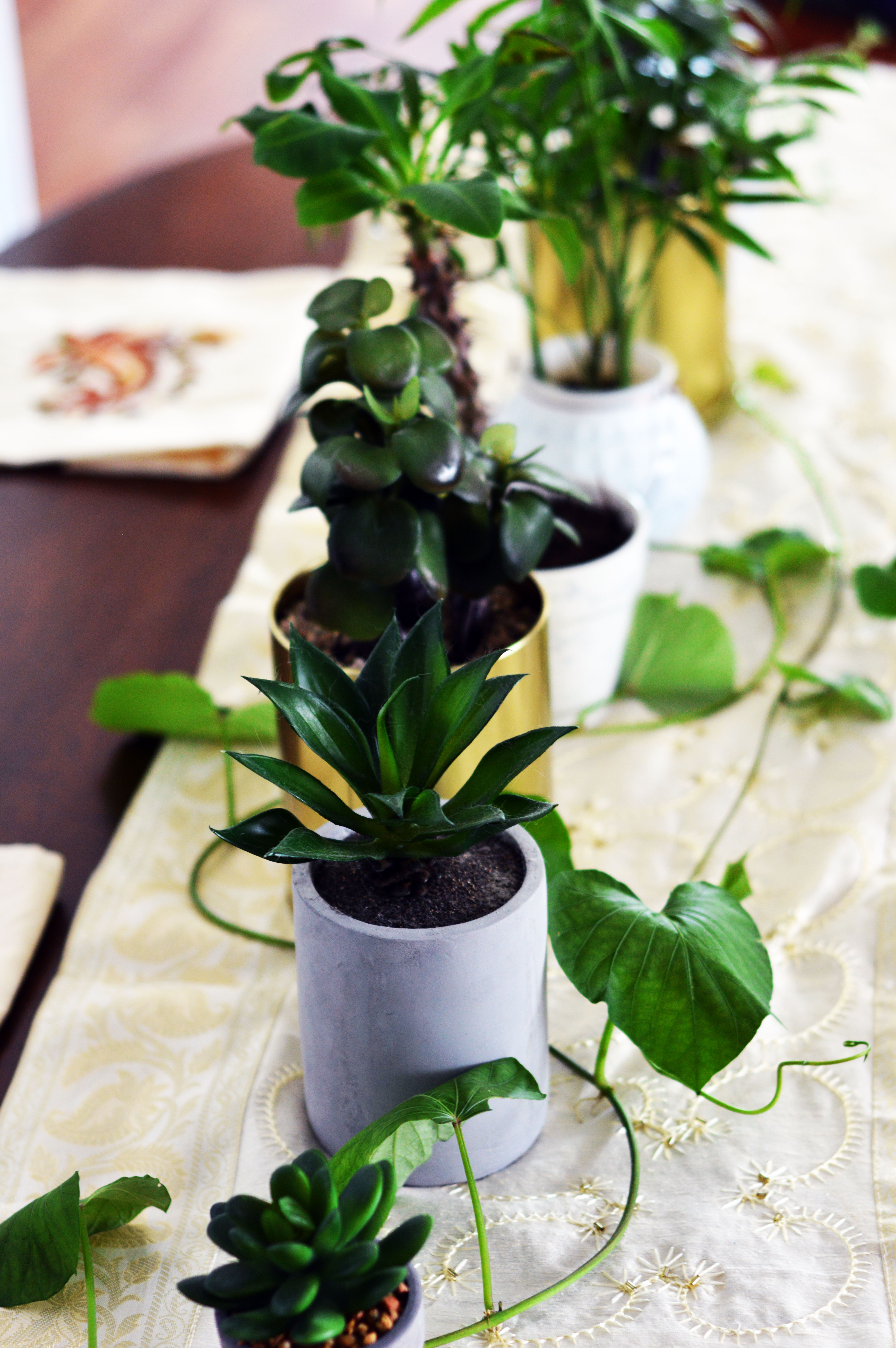 using-succulents-and-plants-as-a-table-centerpiece