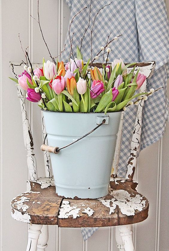 bucket-of-tulips