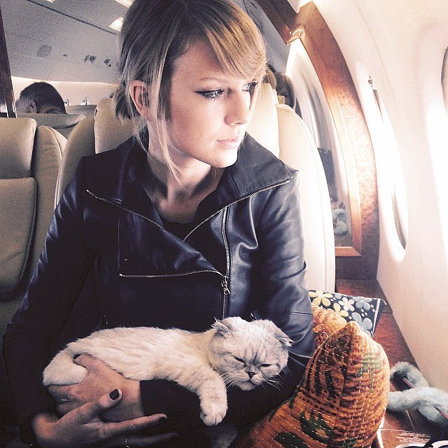 When-Olivia-got-ride-Taylor-private-jet