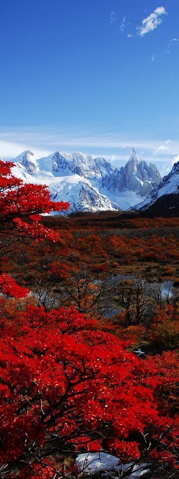 argentina-in-fall
