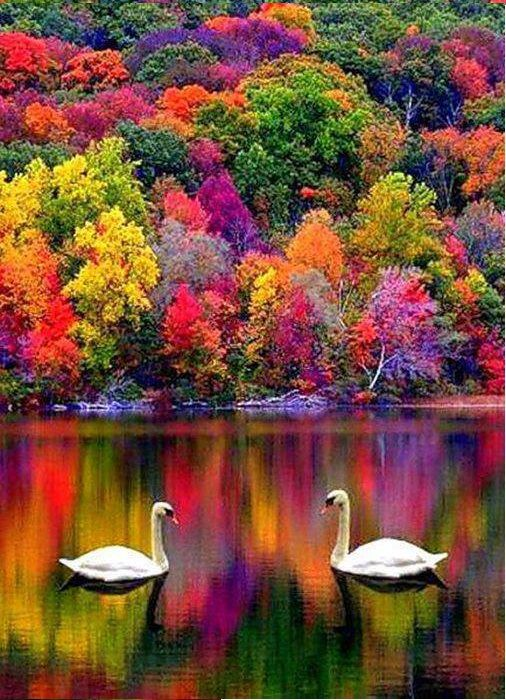 colorful-autumn-landscape