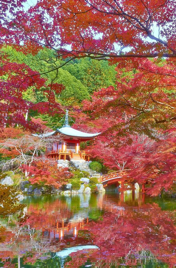 kyoto-japan-fall-landscape