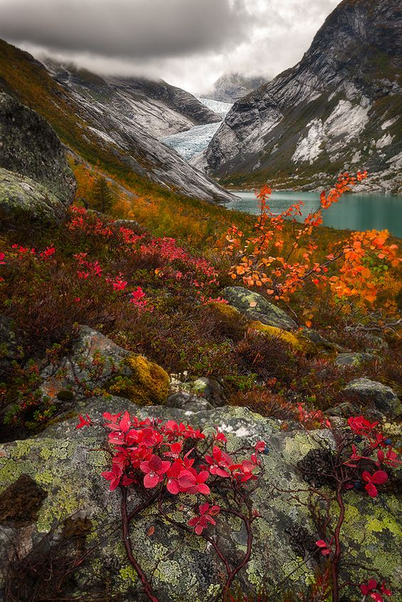 norway-in-fall