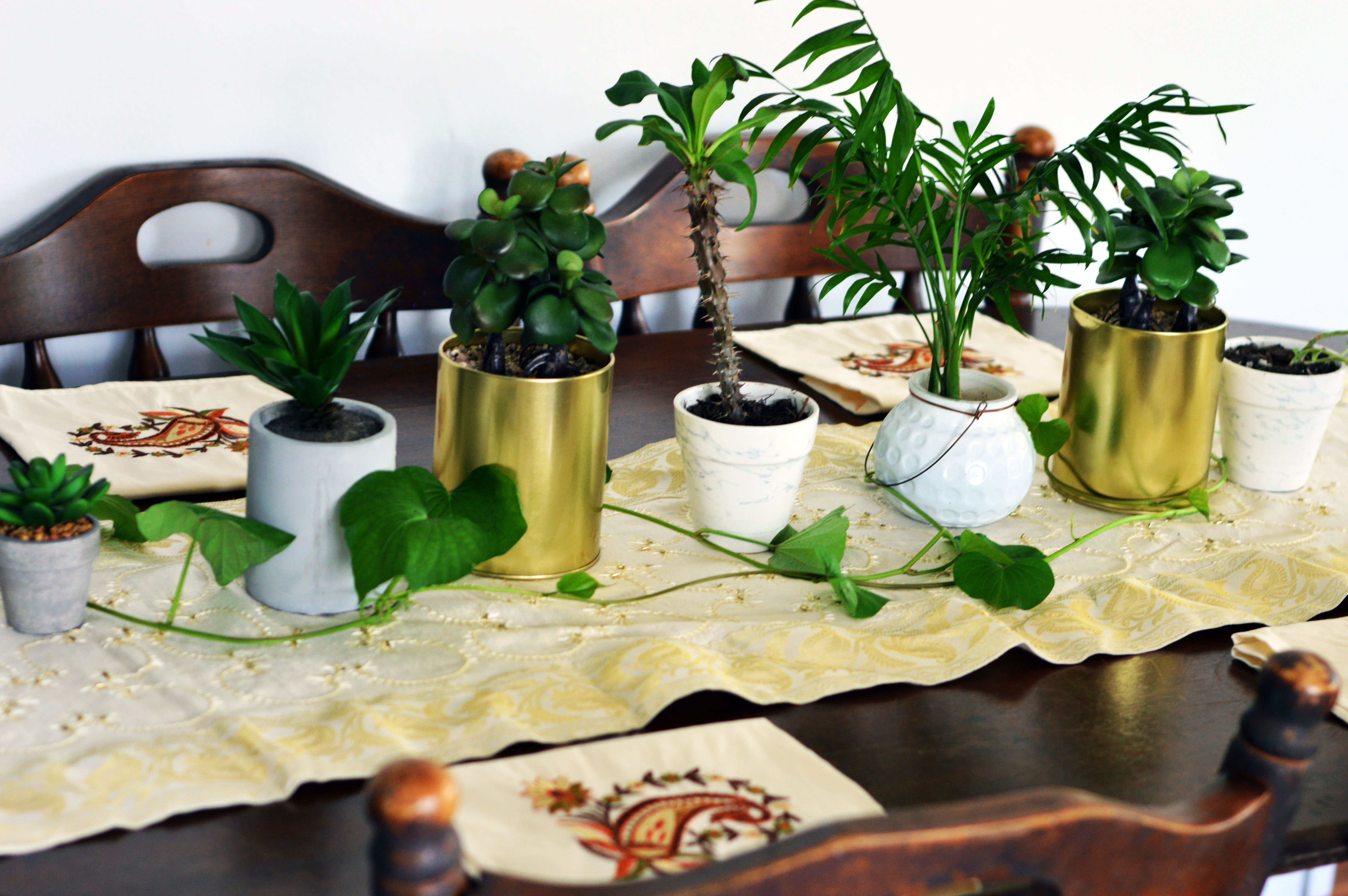 boho-table-layout-with-plants-succulents