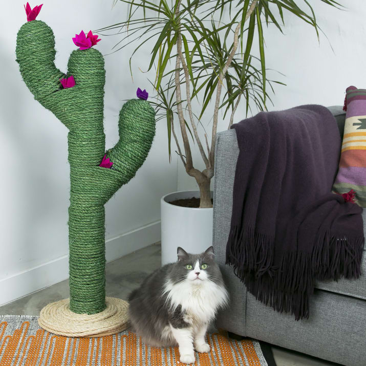 cactus-scratching-post-diy