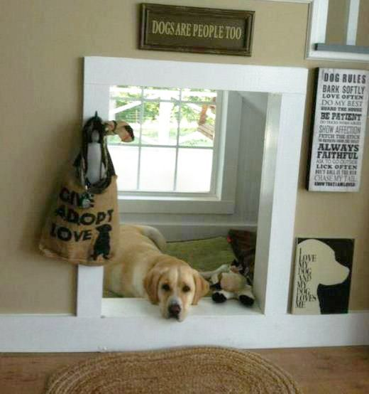 under-stair-dog-house